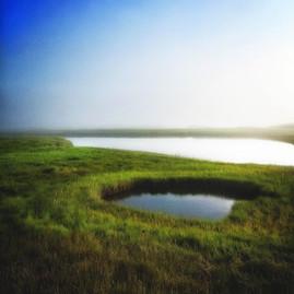 Parson's Marsh