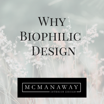 Why Biophilic Design