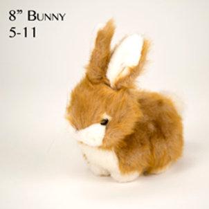 Bunny 5-11