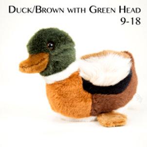Duck 9-18