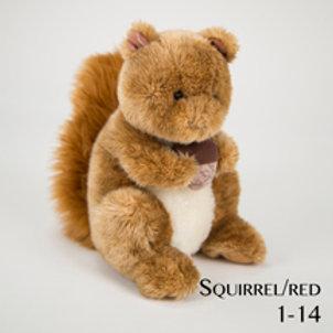 Squirrel 1-14