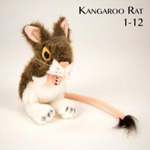 Kangaroo Rat 1-12