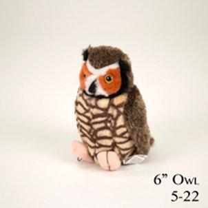 Owl 5-22