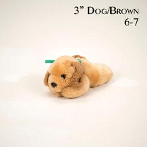 Dog 6-7