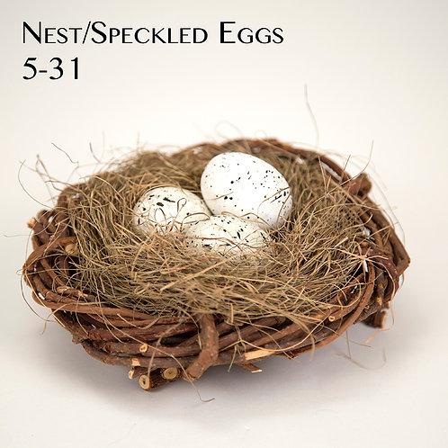 Nest 5-31