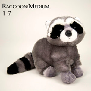 Raccoon (Medium) 1-7