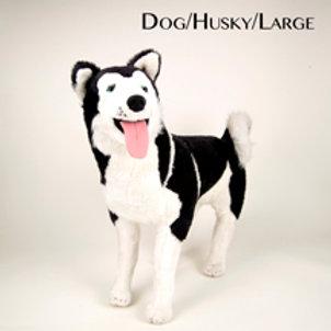 Dog (Large)