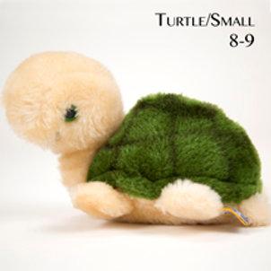 Turtle 8-9