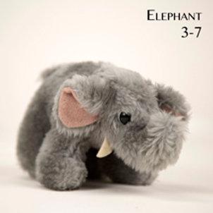 Elephant 3-7
