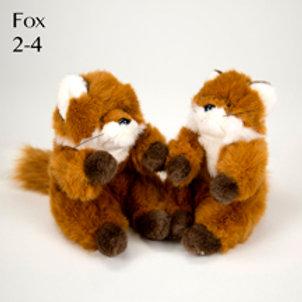 Fox (Small) 2-4