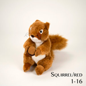 Squirrel 1-16