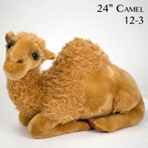 Camel 12-3