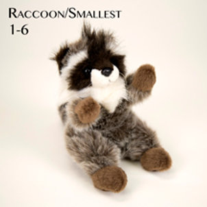 Raccoon (Small) 1-6