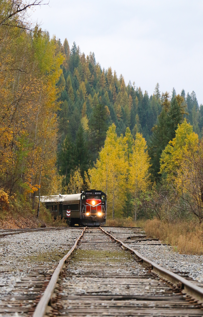 Metaline Train
