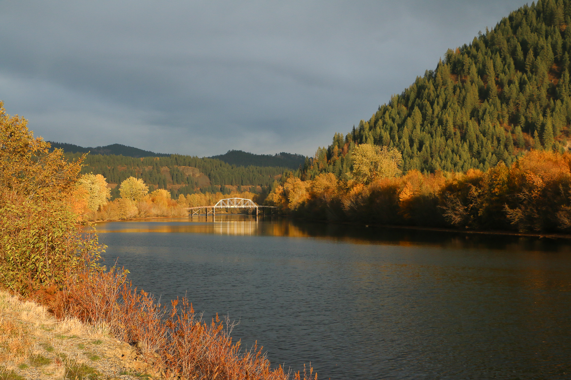 Coeurd'Alene River