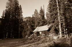 Miner's Cabin at the Kimberly Mine