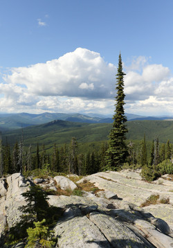 The View from Garver Peak