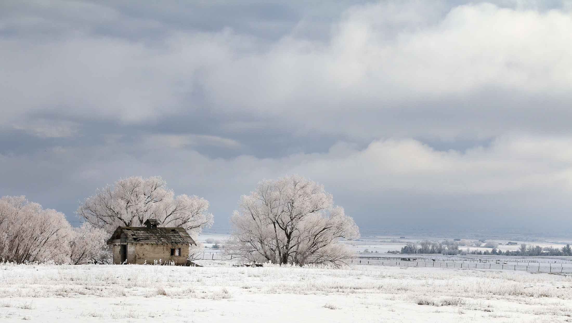 Frozen Homestead
