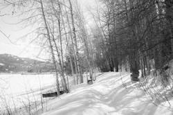 Pend d'Oreille Bay Trail