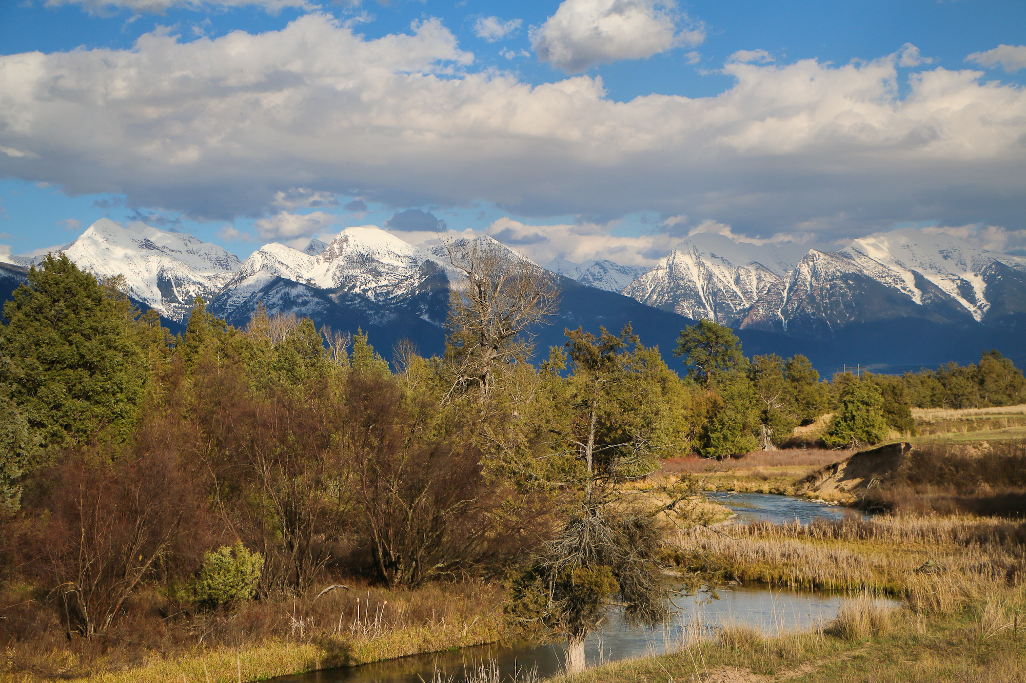 Mission Mountains and Mission Creek
