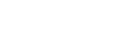 CSV log bianco.png