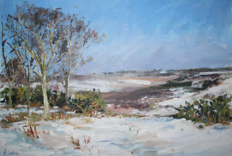 Angela Corben Godshill after the Snow