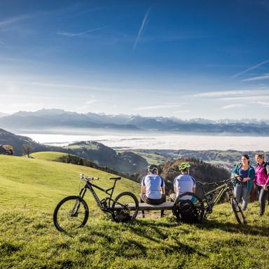 Wald Wandern und Bike auf Alp Scheidegg