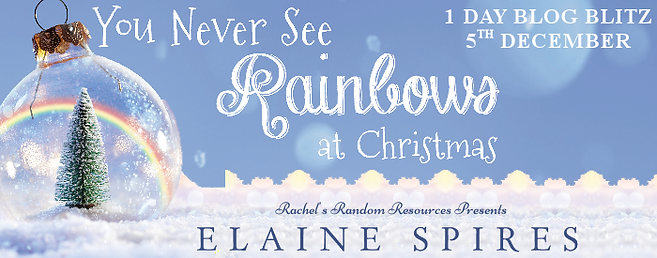 You Never See Rainbows at Christmas Banner