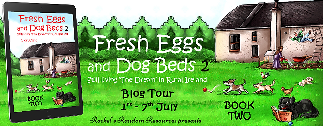 Fresh Eggs and Dog Beds 2 Banner