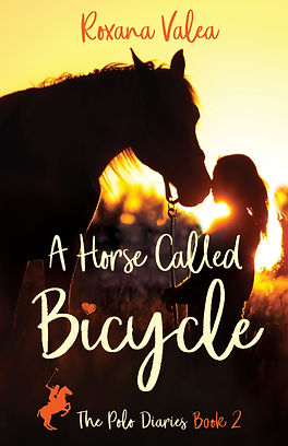 A Horse Called Bicycle Cover
