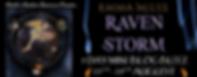 Raven Storm Banner