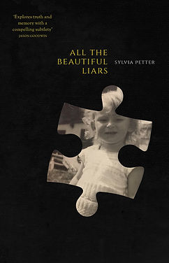 All the Beautiful Liars Cover