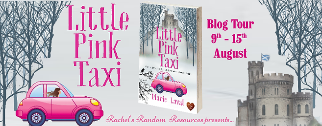 Little Pink Taxi Banner