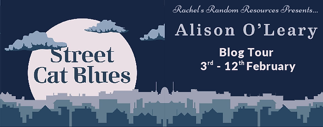 Street Cat Blues Banner