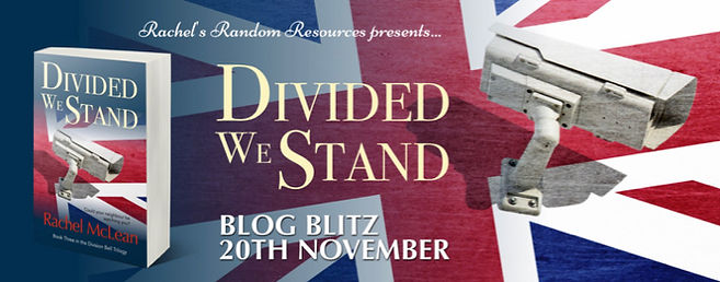 Divided We Stand Banner