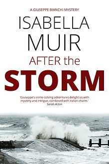 After the Storm final cover.jpg