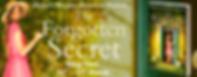 The Forgotten Secret Banner