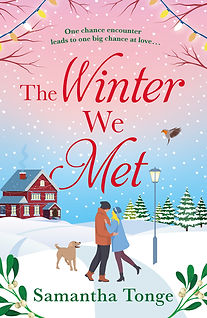 The Winter We Met Cover
