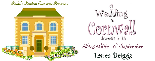 A Wedding in Cornwall (Books 7—12) Banner