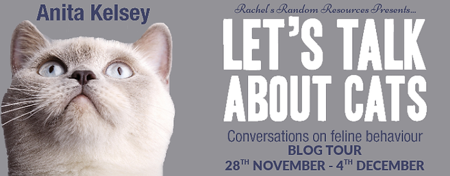 Let's Talk About Cats. Conversations On Feline Behaviour Banner