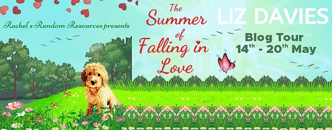 The Summer of Falling in Love Banner