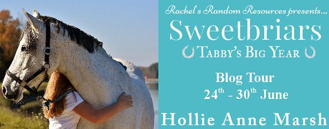 Tabby's Big Year Banner