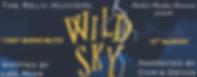 Wild Sky Audio Banner