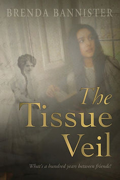 The Tissue Veil Cover