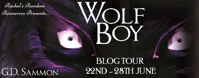 Wolf Boy Banner