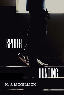 Spider Hunting Cover