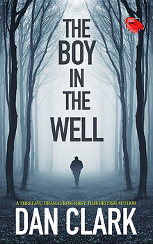 The Boy in the Well Cover