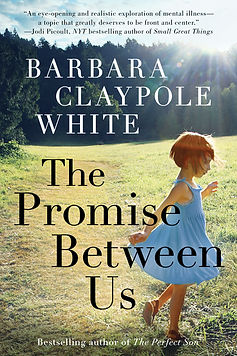 The Promise Between Us Cover