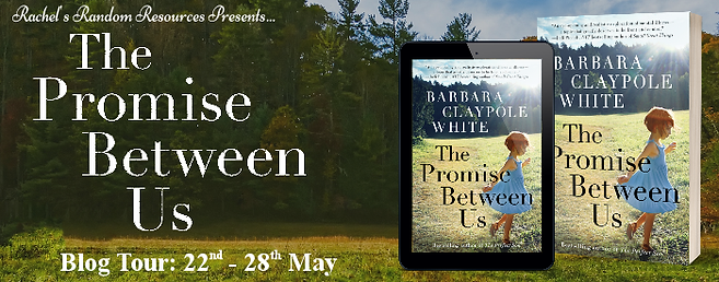 The Promise Between Us Banner