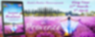 Summer in Provence Banner